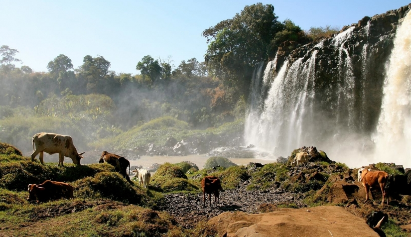 بحر دار الإثيوبية الرائعة